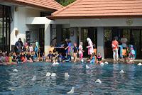 Tempat (Sekolah, Kursus, Les, Privat, hidroterapi)  Renang di Bandung