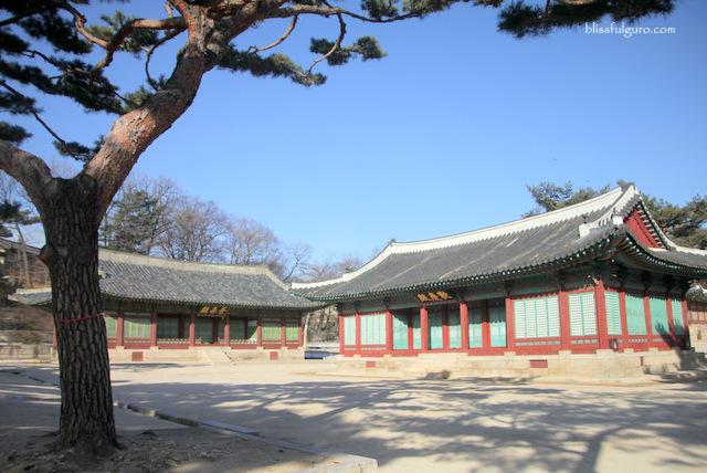 Changgyeonggung Palace Seoul