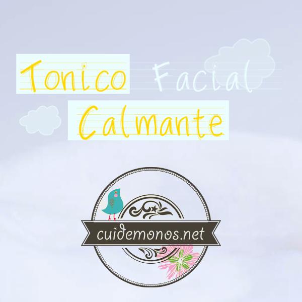 Tónico facial casero