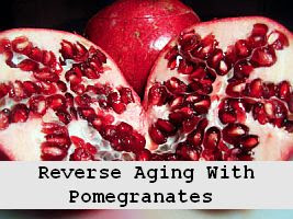 https://foreverhealthy.blogspot.com/2012/04/reverse-aging-prevent-cancer-with.html#more