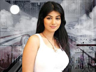 Beautiful Indian Actress Pic, Cute Indian Actress Photo, Bollywood Actress 40