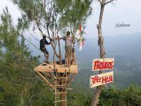 """""""Prongos Tree House""""Indah Nya Omah Kayu Di Perbukitan Kapur Kota Trenggalek"""