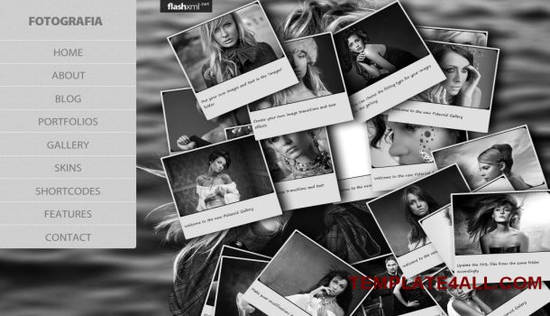 Free Wordpress Brown Photography Gallery Theme