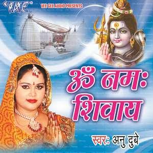 Om Namah Shivay -Anu Dubey super hit  Shiv Bhajan Bhojpuri  album