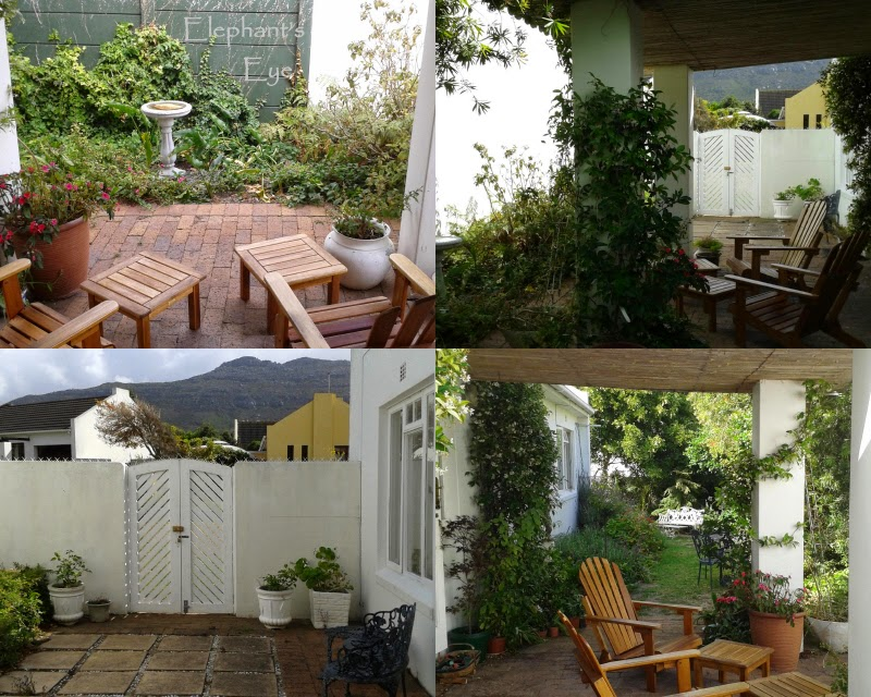 Our new old False Bay garden in November 2014. The beginning.