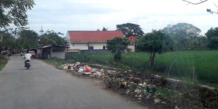 Sampah menumpuk dan berserakan di pinggir jalan.