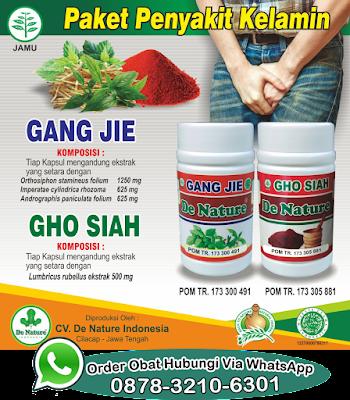 Nama Obat Antibiotik Gangjie Ghosiah Kencing Nanah