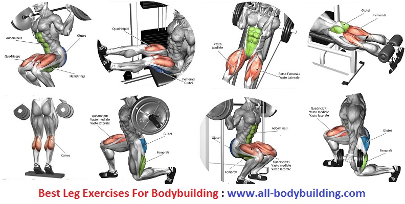 Best Leg Exercises For Bodybuilding - all-bodybuilding.com