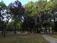 timisoara romania