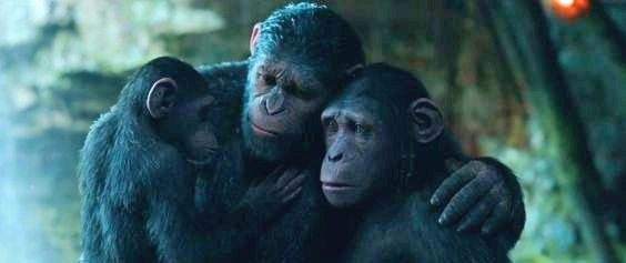 Caesar's family in 'War for the Planet of the Apes'