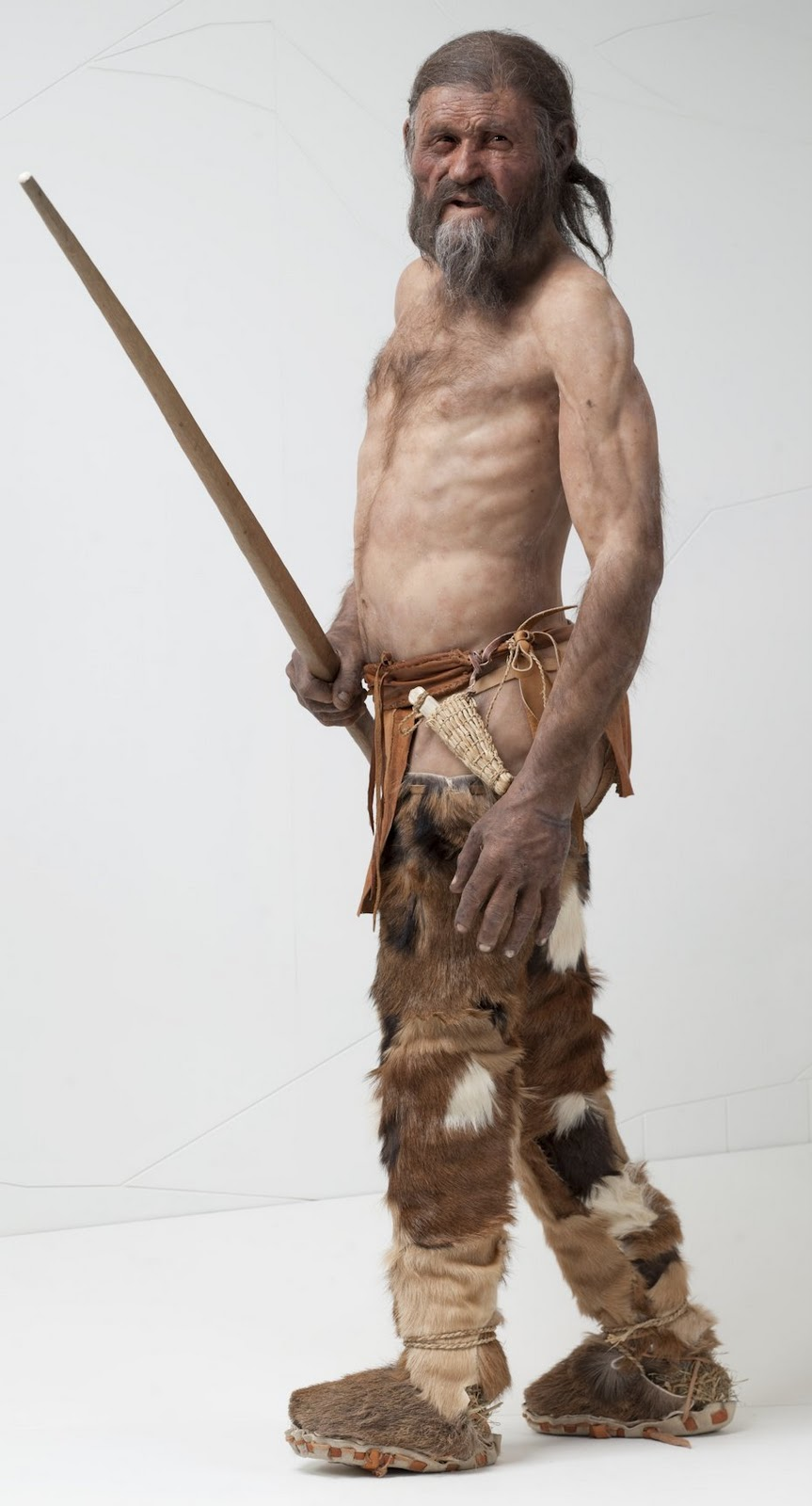 Bacteria in the stomach of Ötzi the Iceman changes ... |Otzi The Iceman