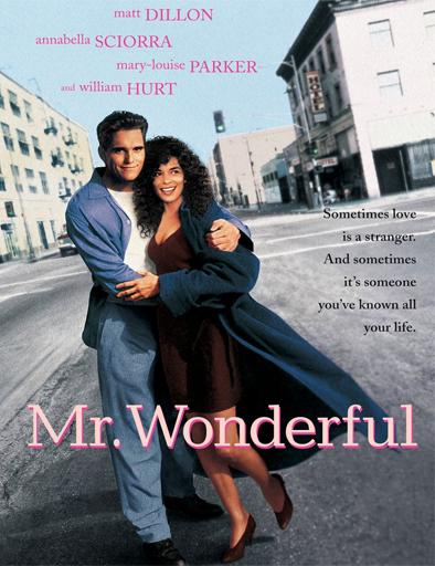 Ver Con quién caso a mi mujer (Mr. Wonderful) (1993) Online