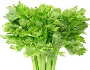 Amazing Health Benefits of Eating Celery