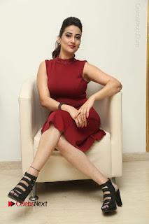Telugu Tollywood Anchor Manjusha Pos in Red Short Dress  0100.JPG
