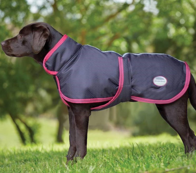 Weatherbeeta Windbreaker 420d Deluxe Dog Coat Half Price