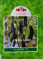 terong yuvita f1,benih terong yuvita f1,terong ungu,lmga agro,cap panah merah