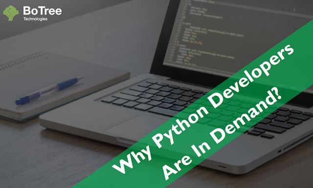python web developer