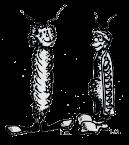 bugbooks