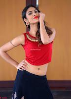 Nishi Gandha in Beautiful Red Crop Top ~  Exclusive 008.jpg