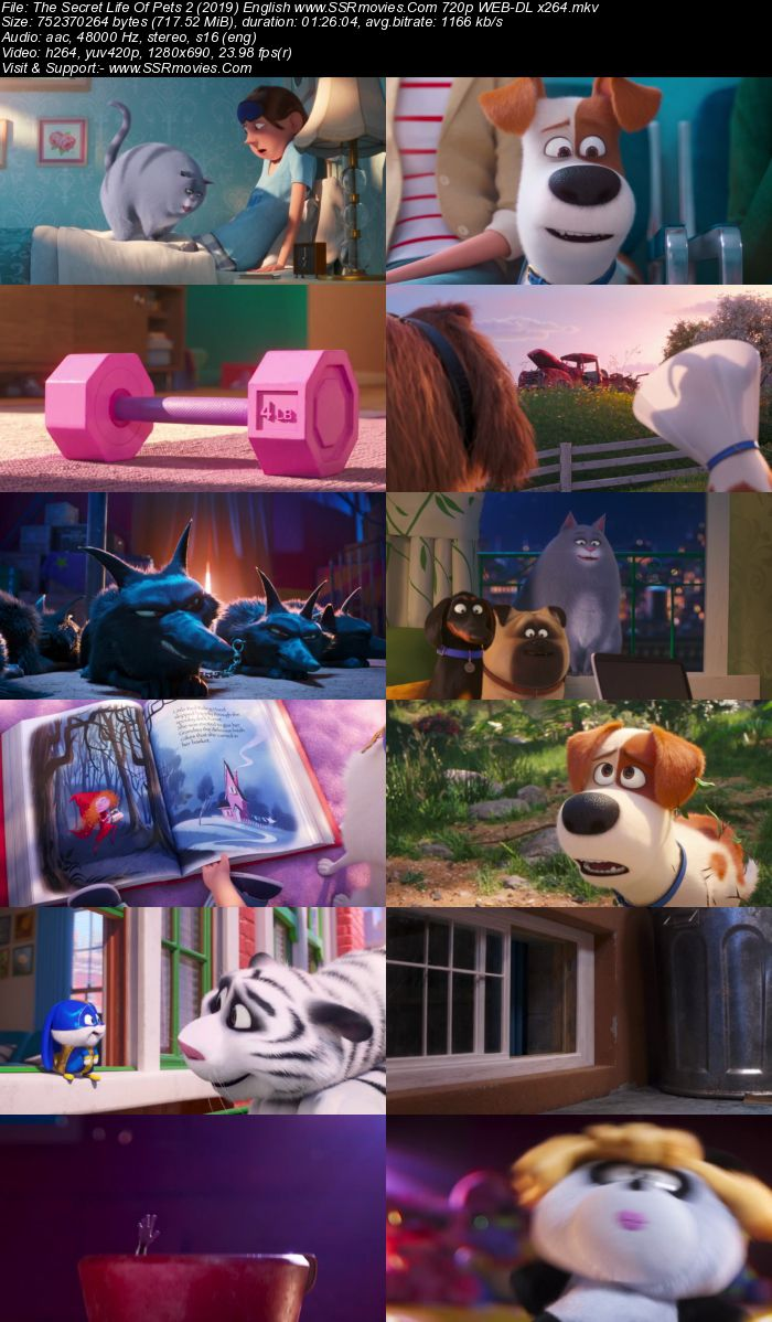 The Secret Life Of Pets 2 (2019) English 480p WEB-DL x264 250MB Movie Download