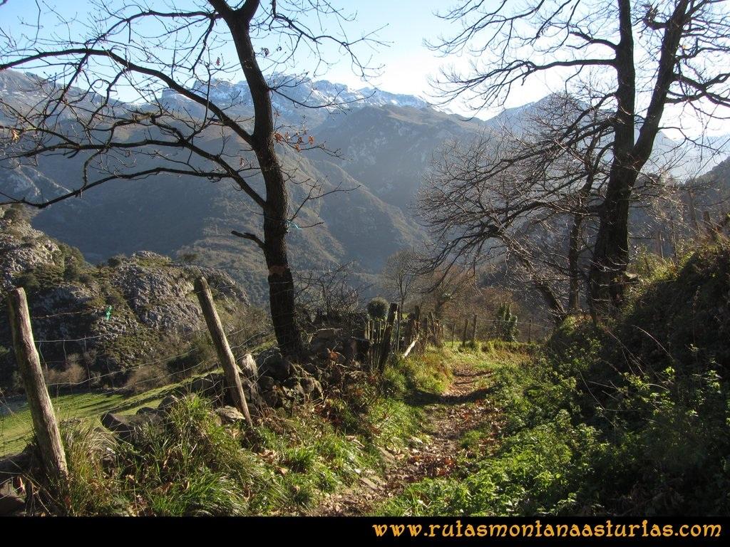 Area Buyera, picos Grandamiana y Plantón: Bajando de Castañedo del Monte.