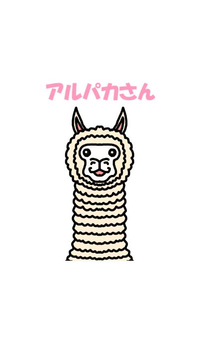 Mr. alpaca