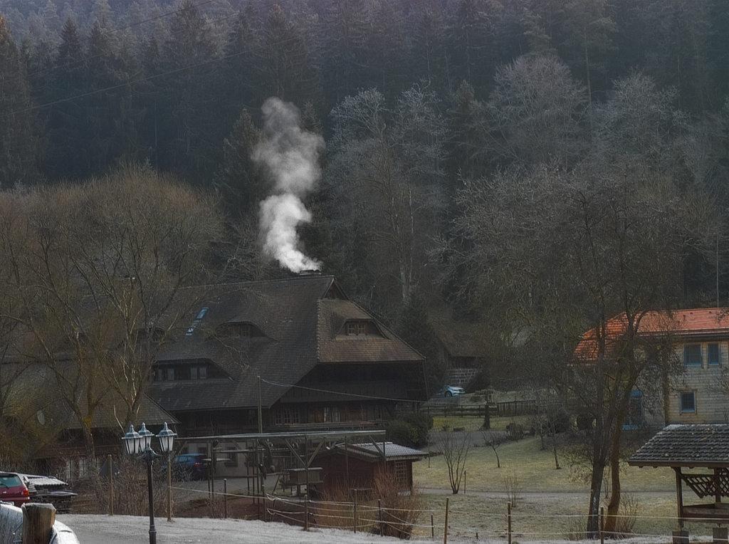Polaroid X530 Foveon - Lautenbachhof (Bad Teinach)