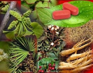 VigRx Plus Natural Ingredients, Formula
