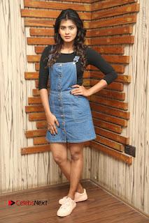 Actress Hebah Patel Stills at Nanna Nenu Naa Boyfriends Movie Interview  0151.JPG
