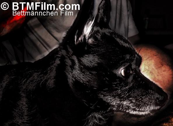 BTM Film: Warum heißt es Bettmännchen Film?