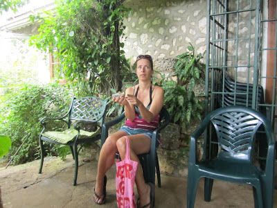 Feeding Hummingbirds in Montego Bay