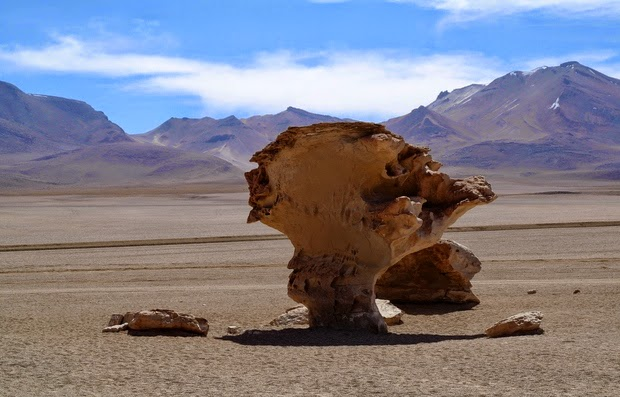 Reserva Nacional de Fauna Andina Eduardo Avaroa, Arbol de Piedra