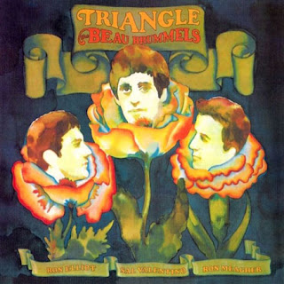 Triangle lp Cover