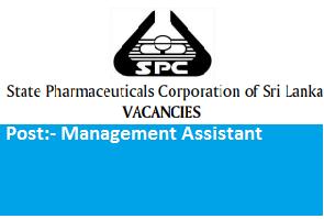 Management Assistant (Clerk)