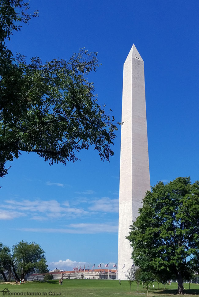 summer in Washington DC - National mall