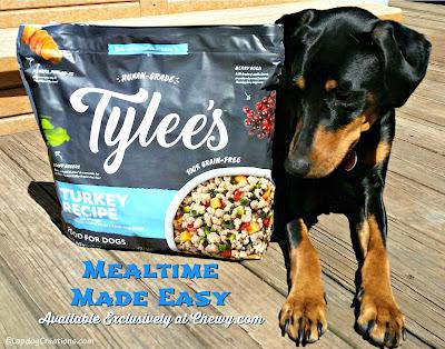 doberman mix puppy with chewy dog food