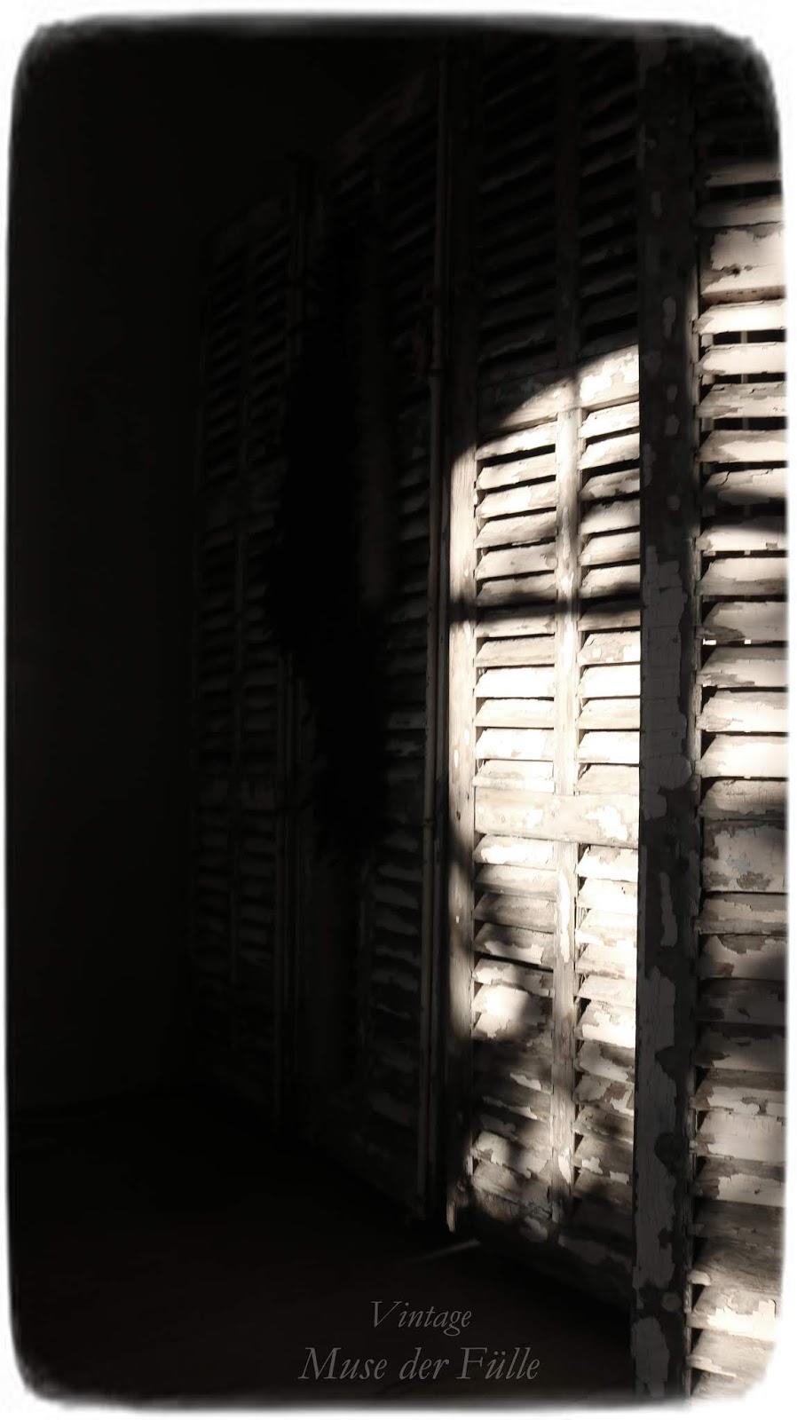 das Spiel vom Licht und Schatten