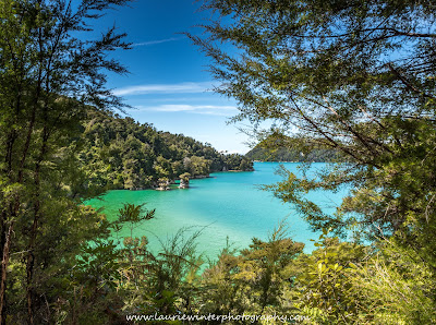 Beach Abel Tasman National Park Great Walk Marahau Nelson