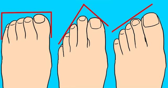 Форма ваших пальцев может рассказать о вашей личности