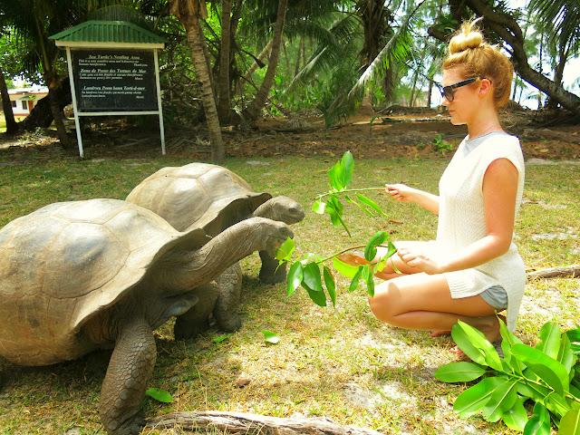 På utflykt till ön Curieuse på Seychellerna