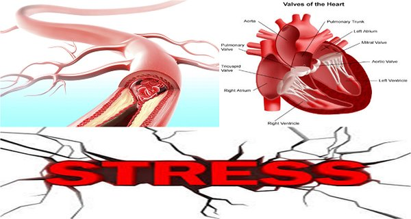 Eat This Healing Mixture And You Don't Have To Worry About Heart Diseases, Blood Vessels And Stress!