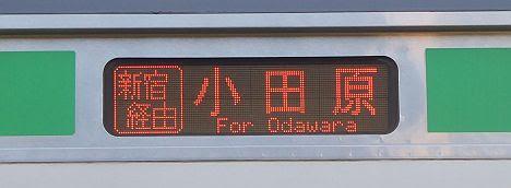 【高崎線内限定表示!】湘南新宿ライン 新宿経由 小田原行き1 E231系