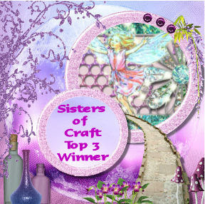 http://thesistersofcraft.blogspot.co.uk/2016/01/sisters-of-craft-january-2016-anything.html
