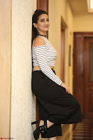Manjusha in sleevelss crop top and black skirt at Darshakudu pre release ~  Exclusive Celebrities Galleries 044.JPG