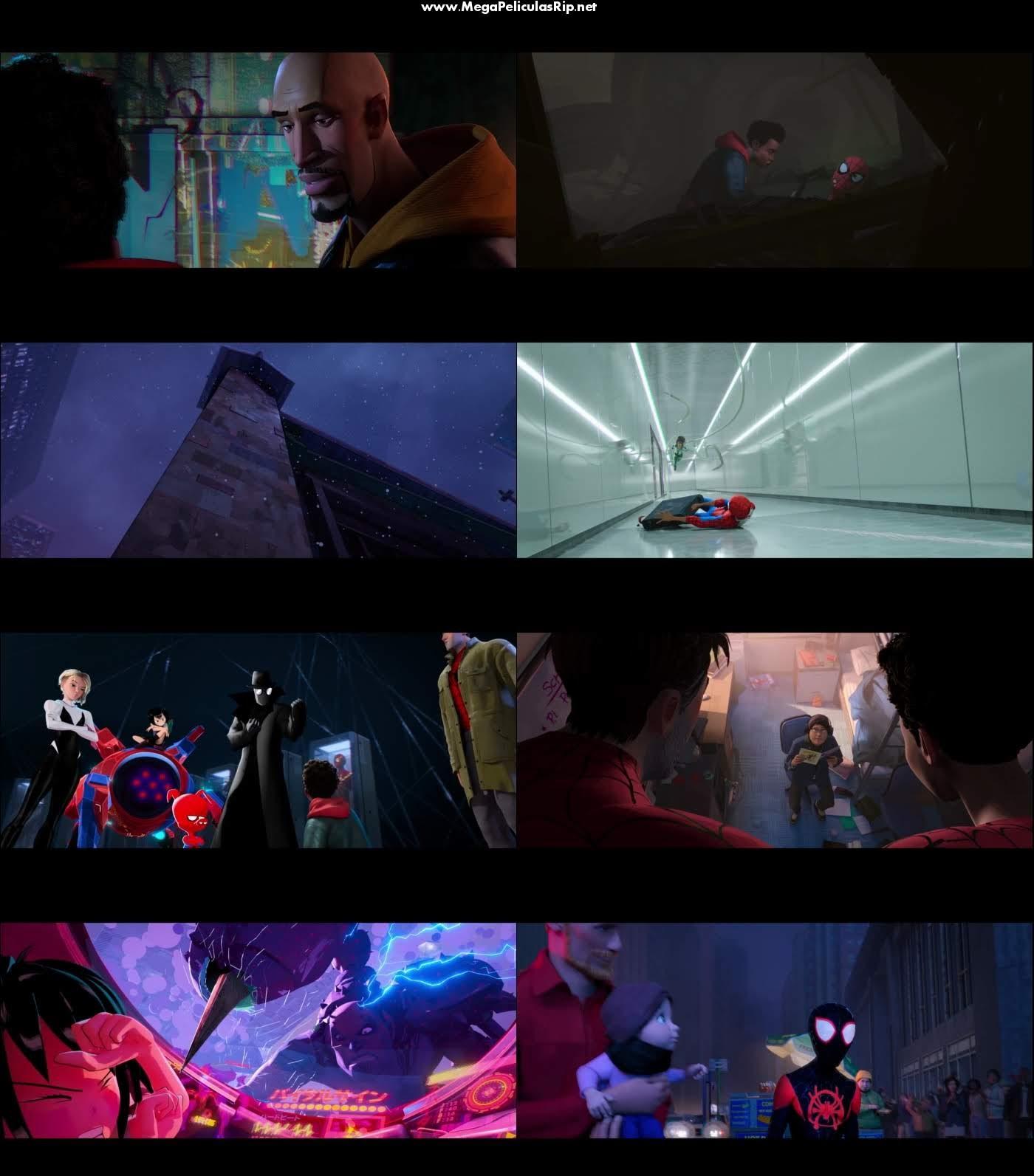 Spider Man Un Nuevo Universo 1080p Latino