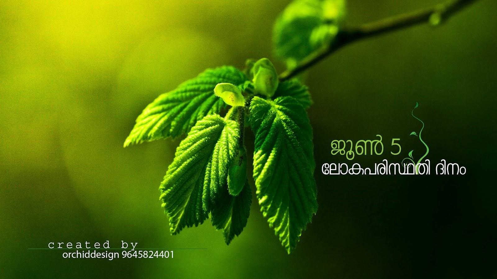 Subrandesign Save Nature