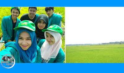Photo di sawah (Photo Oleh: P56)