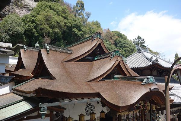 「八つ棟造り」の桧皮葺屋根