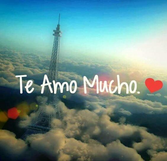 Bonitas Frases De Amor Te Amo Mucho Imagen Romántica Con
