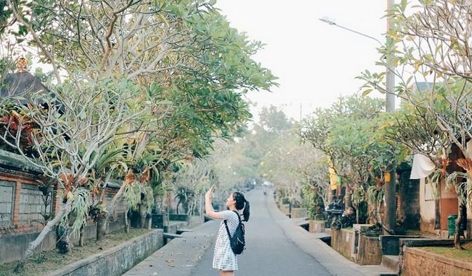 Pesona Keindahan Wisata Desa Nyuh Kuning Di Ubud Gianyar